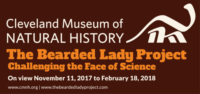 the bearded lady project, After Effects Template Museum Presentation Photo Squares, Presentation templates